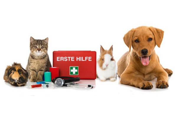Fonds für medizinische Notfälle