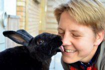 Kaninchenhilfe