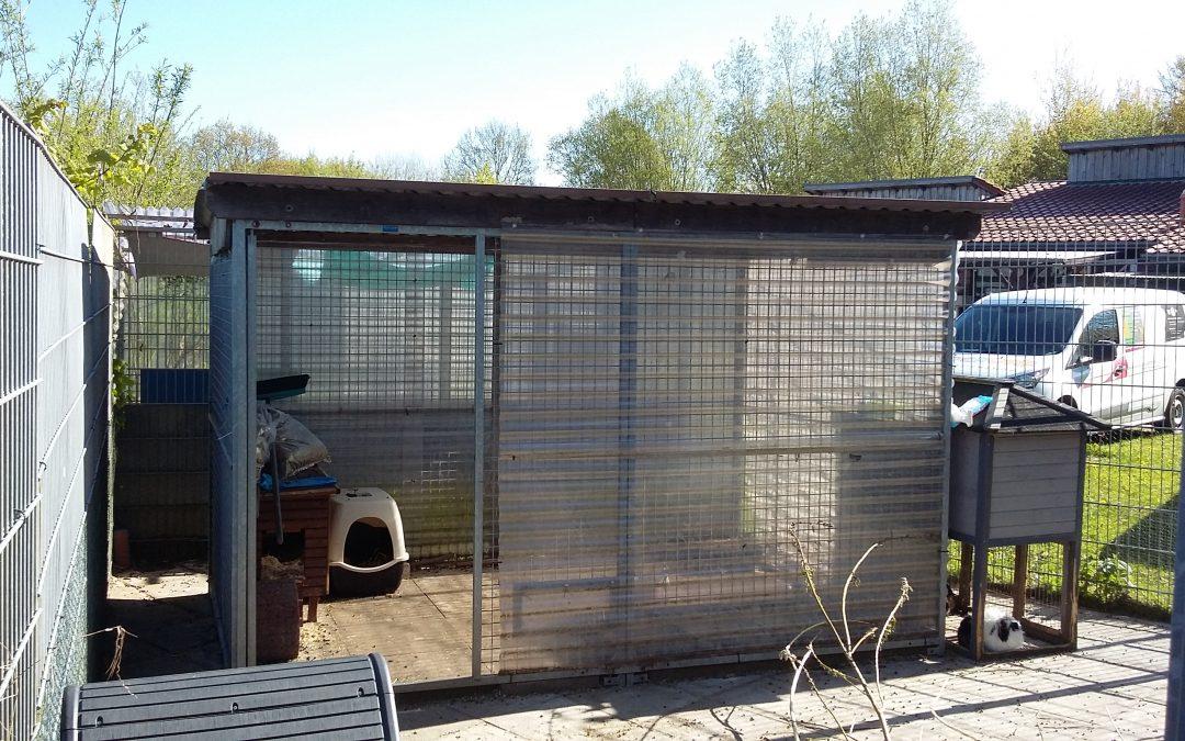 Verbesserung der Unterkünfte unserer Kaninchen