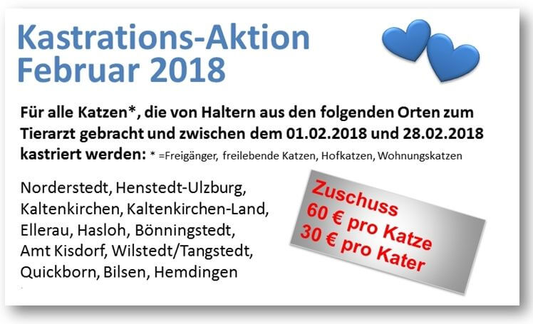 Kastrationsaktion Katzen Februar 2018
