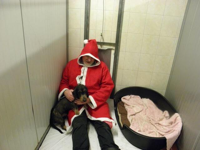 Save the Date: Tierbescherung am 8. Dezember 11 – 14 Uhr