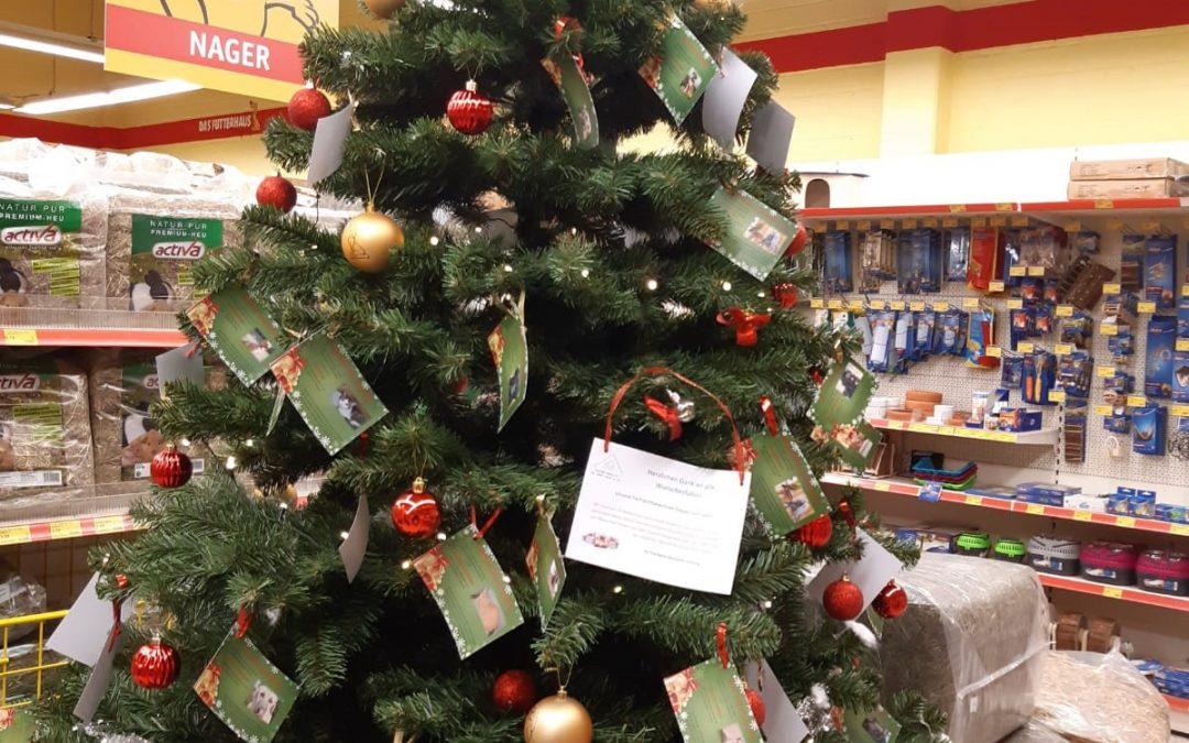 Unsere Wunschbäume stehen wieder in den Läden