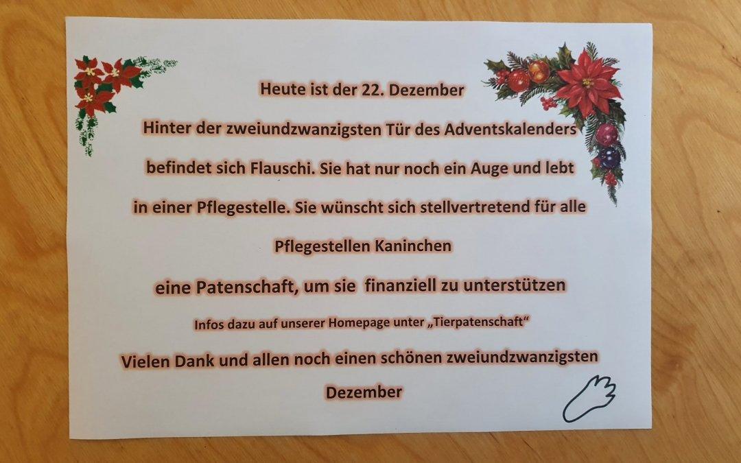 Heute ist der 22. Dezember und wir öffnen ein weiteres Türchen